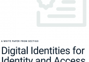Digital Identities for Identity and Access Management